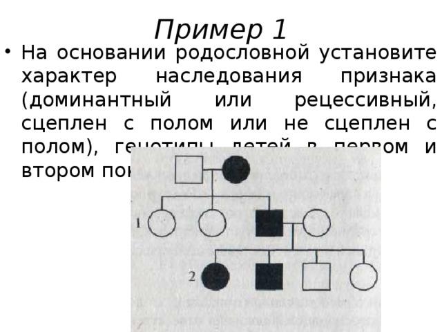 Пример 1 На основании родословной установите характер наследования признака (доминантный или рецессивный, сцеплен с полом или не сцеплен с полом), генотипы детей в первом и втором поколениях.
