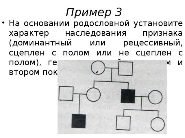 Пример 3 На основании родословной установите характер наследования признака (доминантный или рецессивный, сцеплен с полом или не сцеплен с полом), генотипы детей в первом и втором поколениях.