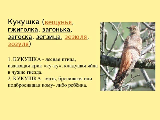 Кукушка ( вещунья , гжиголка , загонька , загоска , зегзица , зезюля , зозуля )   1. КУКУШКА - лесная птица, издающая крик «ку-ку», кладущая яйца в чужие гнезда.  2. КУКУШКА - мать, бросившая или подбросившая кому- либо ребёнка.