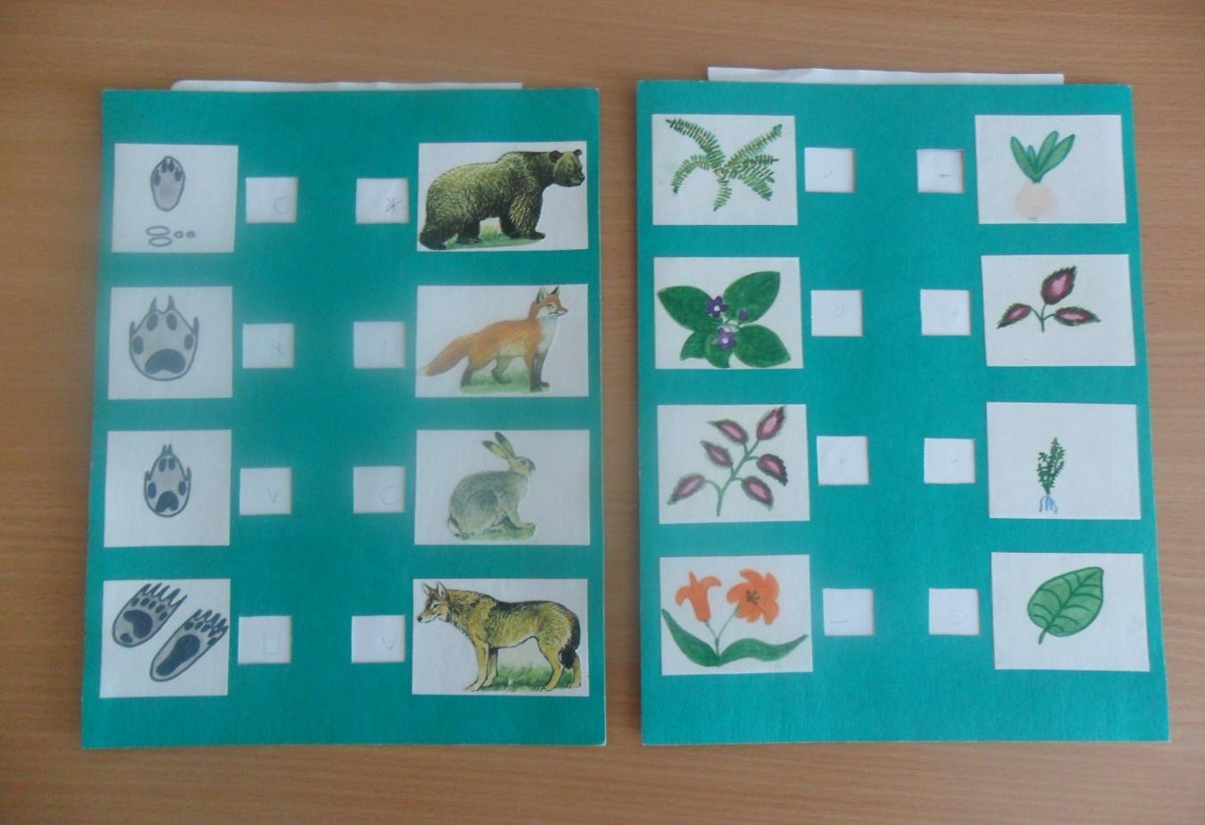 Картинки игры по экологии