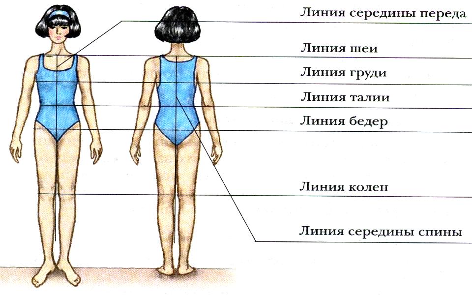 мужских женских картинка конструктивные линии фигуры сама решает