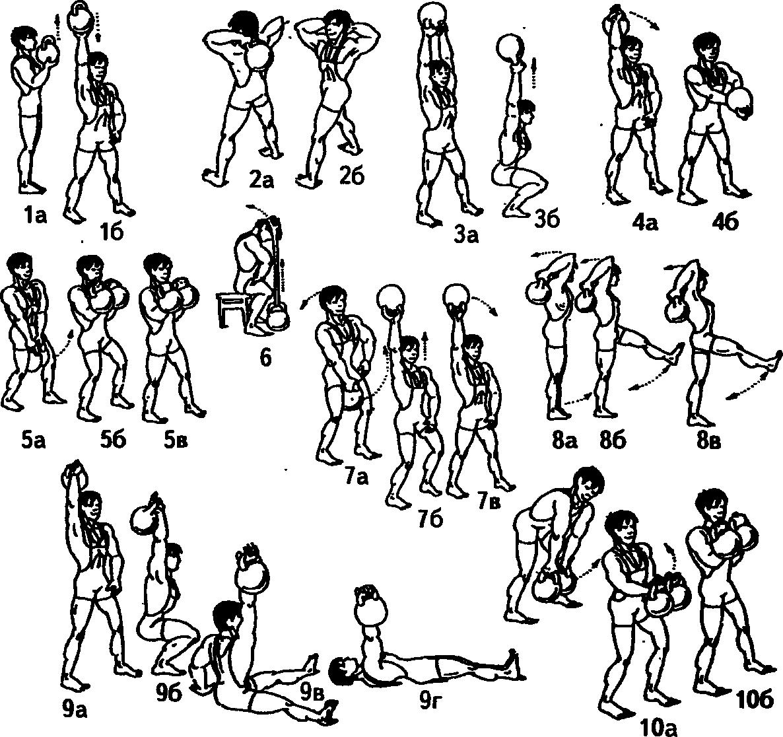 комплексы упражнений с гантелями в картинках мужские обязательный элемент