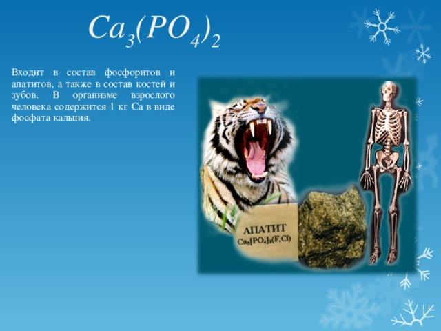 Ca 3 (PO 4 ) 2  Входит в состав фосфоритов и апатитов, а также в состав костей и зубов. В организме взрослого человека содержится 1 кг Са в виде фосфата кальция.
