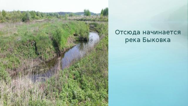 Отсюда начинается река Быковка