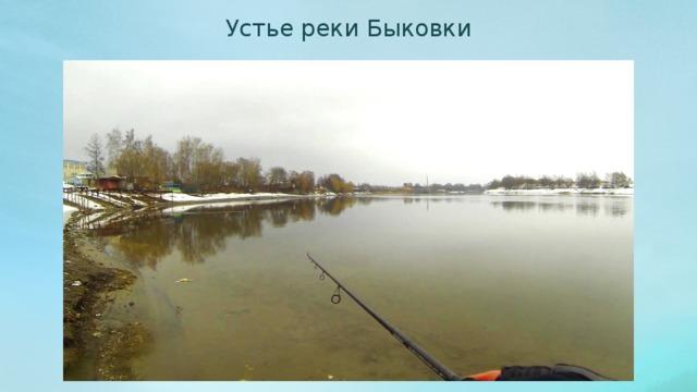 Устье реки Быковки
