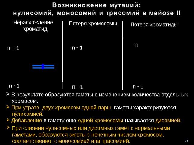 Нерасхождение  хроматид Потеря хромосомы Потеря хроматиды n n - 1 n + 1 n - 1 n - 1 n - 1  В результате образуются гаметы с изменением количества отдельных  хромосом.  При утрате двух хромосом одной пары гаметы характеризуются  нулисомией.  Добавление в гамету еще одной хромосомы называется дисомией.   При слиянии нулисомных или дисомных гамет с нормальными  гаметами, образуются зиготы с нечетным числом хромосом,  соответственно, с моносомией или трисомией. 26