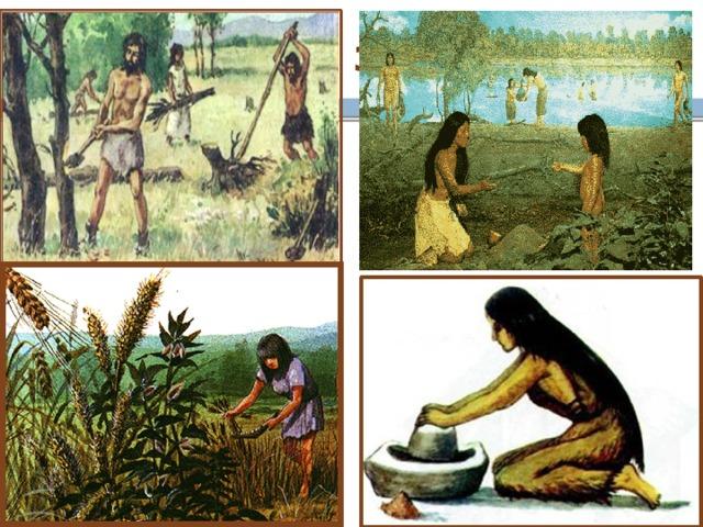 продам картинки древние люди собирают растения время когда