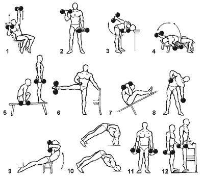 Комплексы упражнений с гантелями в картинках
