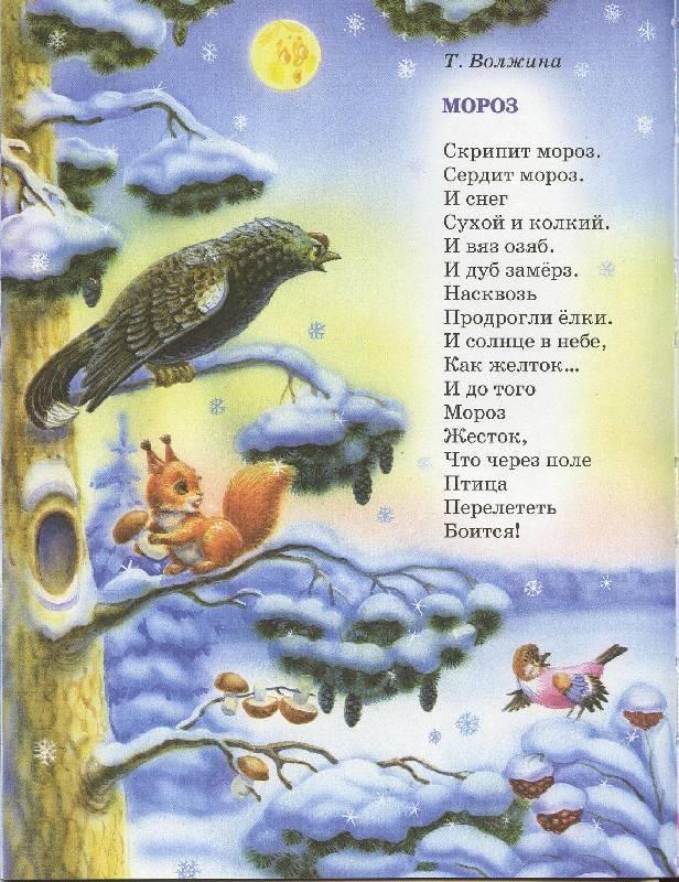 Надписью для, стихи зима картинки