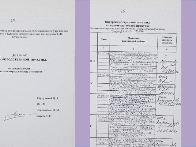 Отчет учебная практика мфц 1876