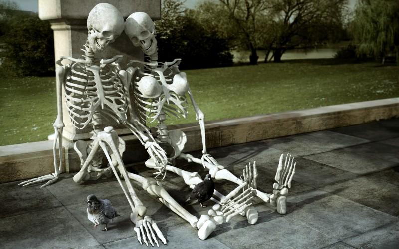 Прикольный скелет человека в картинках